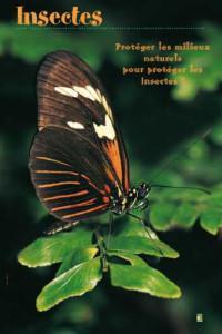 insectesexposition-20